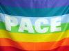 200pxbandiera_della_pace_4